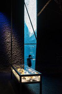 #102 – Museu blau